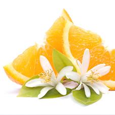 Extrait de fleur d'oranger